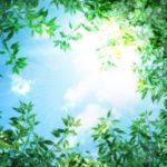 22.【電脳せどりでおススメの拡張機能①】モノゾン